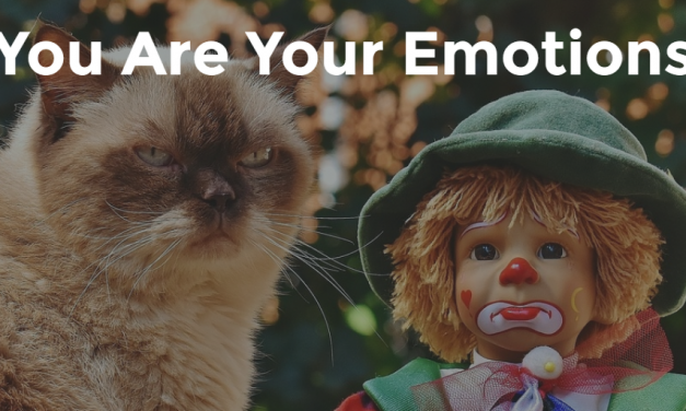 You Are Your Emotions