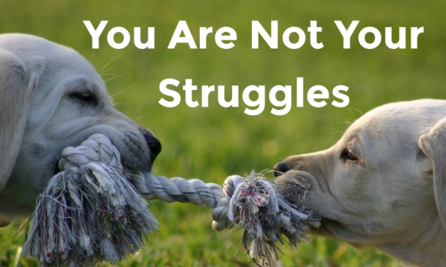 You Are Not Your Struggles