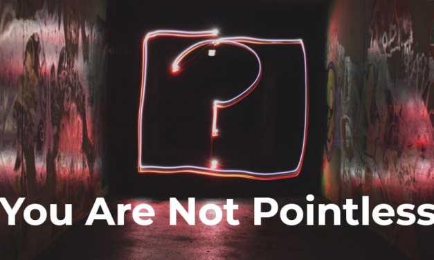 You Are Not Pointless